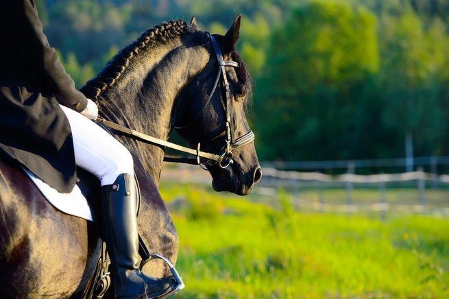 montar a caballo_turismo rural
