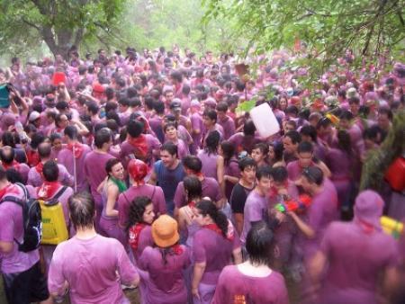 Guiarural. La interminable batalla del vino en Haro. img_20100624201101.jpg