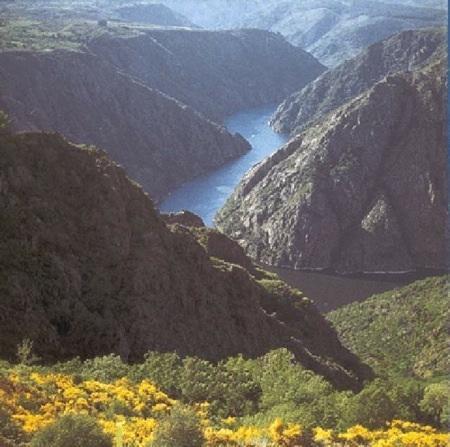 Guiarural. La Ribeira Sacra, un sitio ideal para actividades en la naturaleza. img_20100715195344.jpg