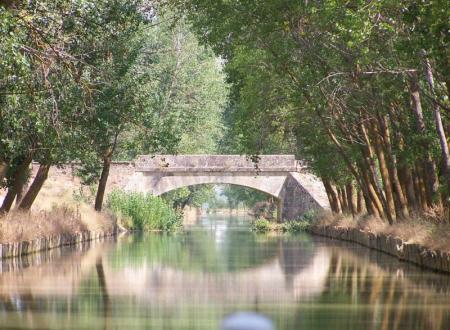 Guiarural. El Canal de Castilla, un espacio natural de 207 km de largo. img_20100720174224.jpg