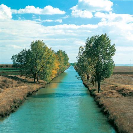 Guiarural. El Canal de Castilla, un espacio natural de 207 km de largo. img_20100720174430.jpg