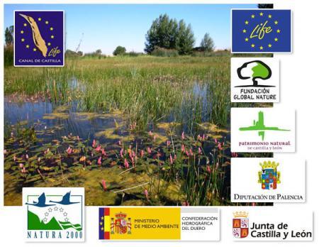 Guiarural. El Canal de Castilla, un espacio natural de 207 km de largo. img_20100720174528.jpg