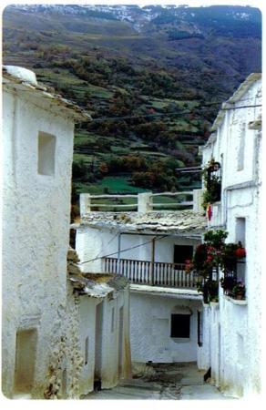 Guiarural. La Alpujarra más auténtica. img_20100727213905.jpg