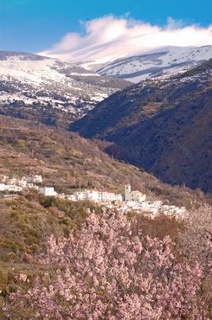 Guiarural. La Alpujarra más auténtica. img_20100727213948.jpg