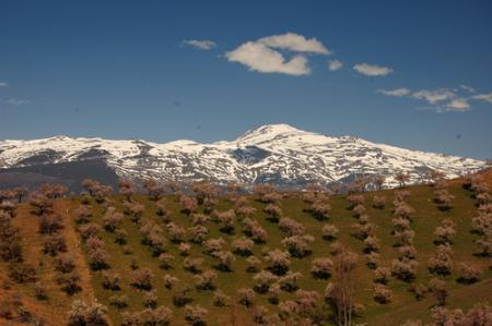 Guiarural. La Alpujarra más auténtica. img_20100727214000.jpg