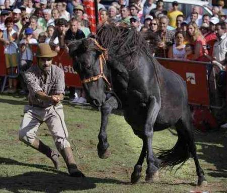 Guiarural. La Fiesta del Asturcón. img_20100808204150.jpg