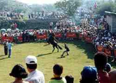 Guiarural. La Fiesta del Asturcón. img_20100808204315.jpg