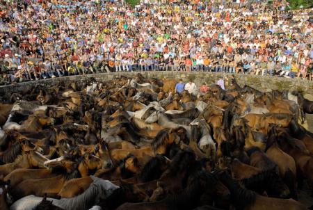 . A Rapa das Bestas, un rito ancestral. img_20110702124038.jpg
