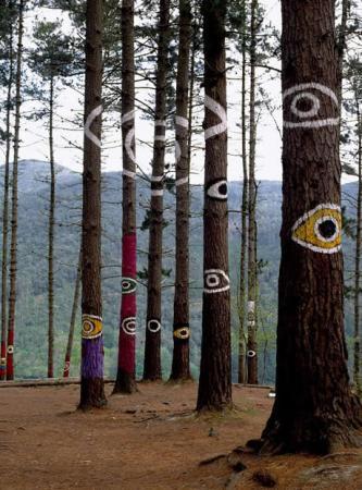 . El bosque mágico. img_20110709121039.jpg
