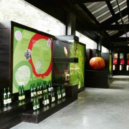 . Sagardoetxea, el museo de la sidra vasca. img_20110823195229.jpg