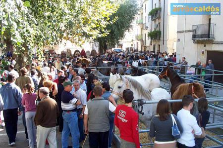. Feria de Tots Sants en Cocentaina. img_20111023135718.jpg