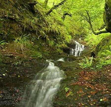 . Carranza, el valle de las maravillas. img_20111201120843.jpg