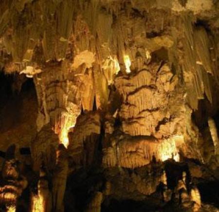 . Carranza, el valle de las maravillas. img_20111201121257.jpg