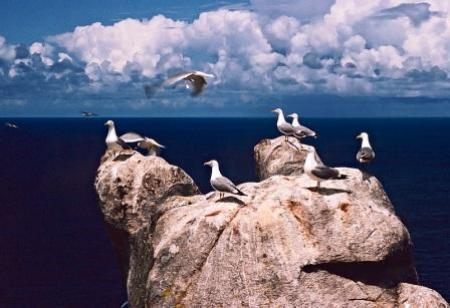. Las islas Sisargas, mirador de la Costa da Morte. img_20120607145414.jpg