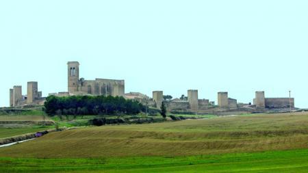 . El Cerco de Artajona, un viaje a la Edad Media. img_20120704171018.jpg