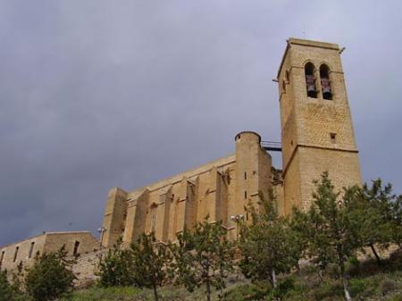 . El Cerco de Artajona, un viaje a la Edad Media. img_20120704171032.jpg