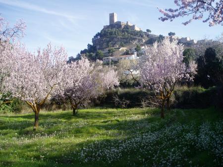 Guiarural. La Ruta de las Ermitas de Biar. img_20120712140822.jpg