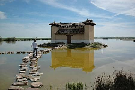 . Reserva Natural de las lagunas de Villafáfila. img_20120718233157.jpg