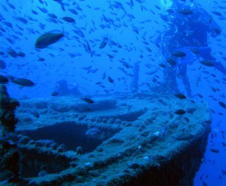 . Isla Grosa, el último reducto frente al Mar Menor. img_20120808081200.jpg