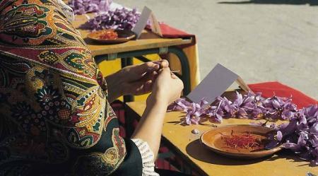. La Fiesta de la Rosa del Azafrán. img_20121025195552.jpg