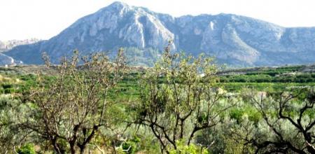 . Valle de Ricote, un oasis en Murcia. img_20121031125157.jpg