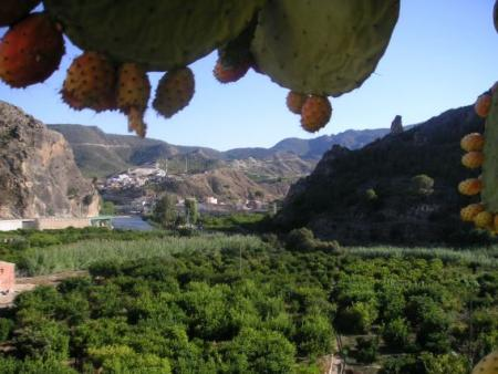 . Valle de Ricote, un oasis en Murcia. img_20121031125241.jpg