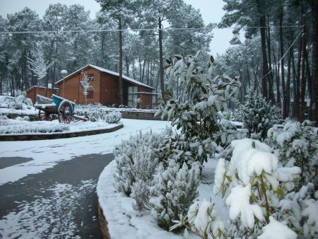 Guiarural. Promoción de invierno en el Paraíso del Tiétar. img_20100217144940.jpg