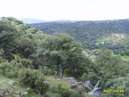 Guiarural. Ruta del Castro de Chamartín (Ávila). img_20100421181559.jpg
