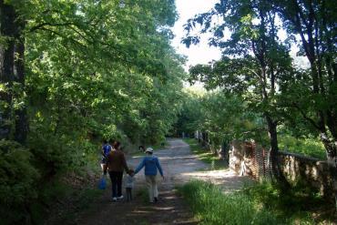Guiarural. La Posada  de  Miraflores - turismo rural -. Primavera.jpg
